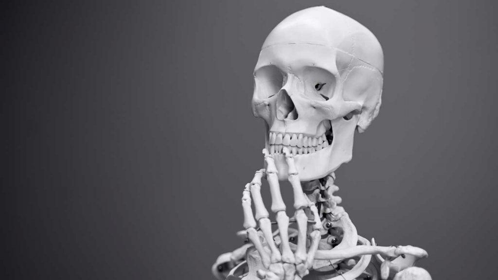 Anatomy & Physiology Background